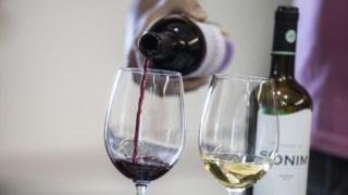 vinhos-portugal-brasil,vinhos-portugal-rio,publico,vinhos,fugas,brasil,
