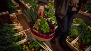 p3,desperdicio-alimentar,alimentacao,agricultura,uniao-europeia,ambiente,