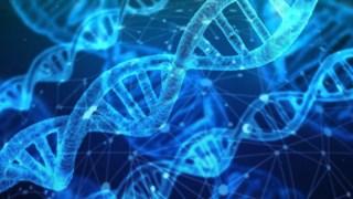 desinformacao-cientifica,podcast-assim-fala-ciencia,desinformacao,edicao-genetica,ciencia,genoma,