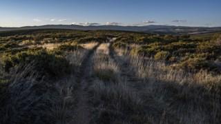 trasosmontes,reportagem,douro,local,portugal,conservacao-natureza,
