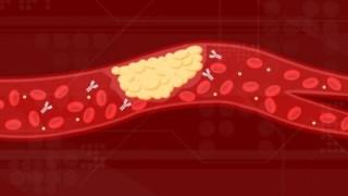 coronavirus,estados-unidos,saude,ciencia,medicina,doencas,
