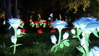 familia,criancas,natal,fugas,lisboa,jardim-botanico,