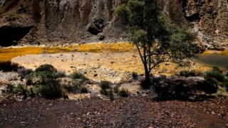 mertola,minas,local,alentejo,ambiente,florestas,