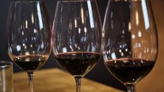 vinicultura,vinhos,vinho,economia,exportacoes,