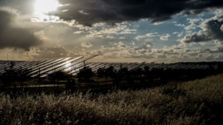 energia-solar,ambiente,florestas,conservacao-natureza,biodiversidade,energia,