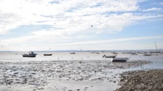 pescadores,p3,podcasts,podcasts-publico,tejo,mar,