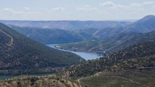 unesco,douro,patrimonio,economia,turismo,ambiente,