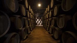 vinho-porto,especial-vinhos,vinhos,douro,fugas,porto,