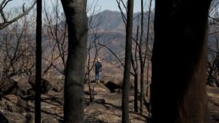 incendios,eua,meteorologia,ambiente,clima,alteracoes-climaticas,