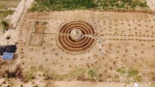 arvores,horta,ambiente,senegal,africa,desertificacao,