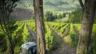 pais-basco,vinhos,gastronomia,viagens,fugas,