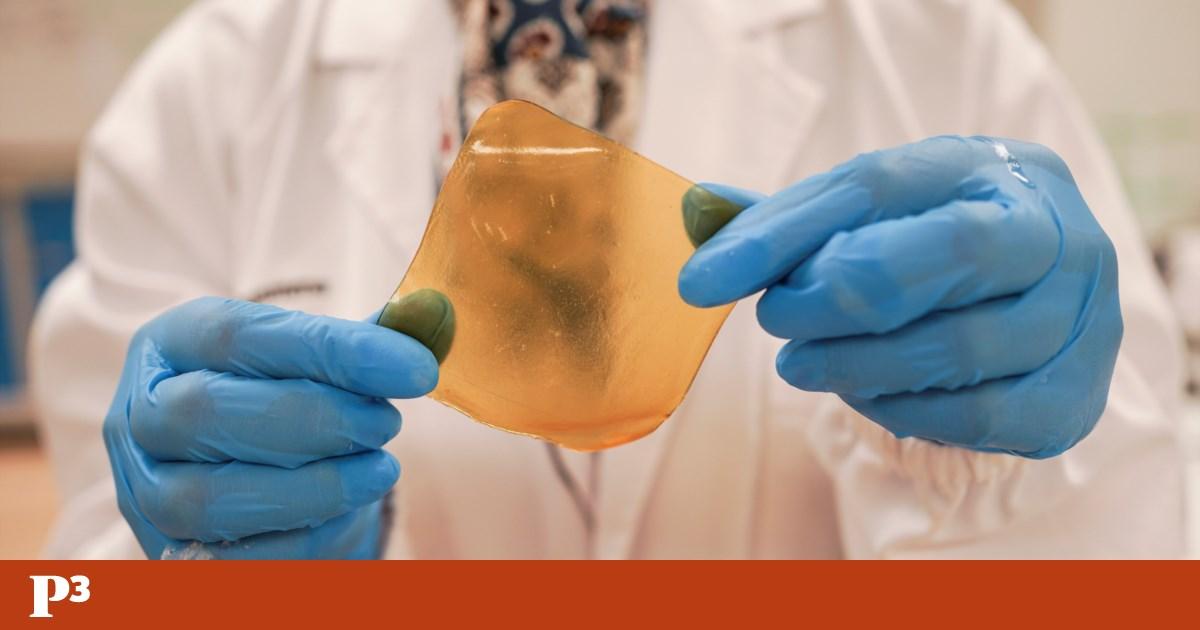Cientistas de Singapura transformam sobras de fruta em pensos rápidos antibacterianos