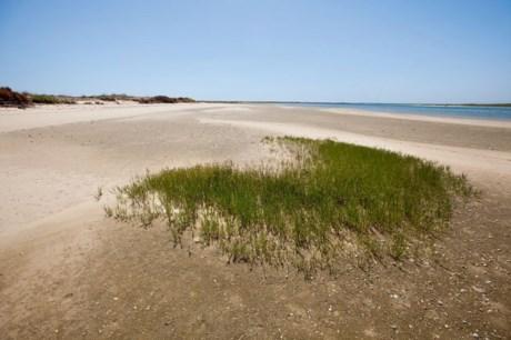 Ilha da Barreta, também conhecida como a Ilha Deserta, Algarve
